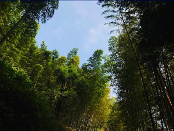 四川合江自怀风景区